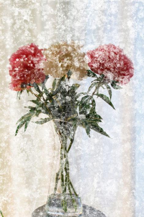 Galerie Blumen