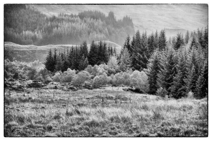 Schottland_Gratofafie_217