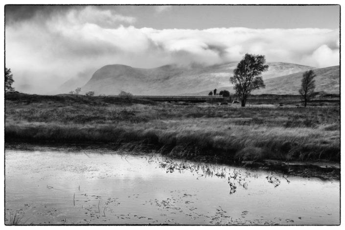 Schottland_Gratofafie_222